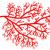 Inhibition de l'angiogenèse par les plaquettes dans la ScS